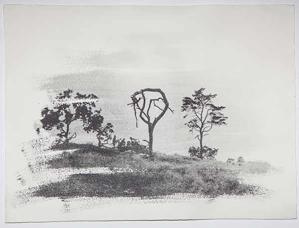 Tree8_LisaStrombeck_web